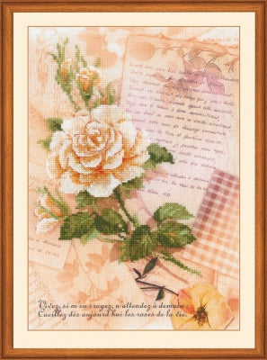 Love Letters Rose - Riolis