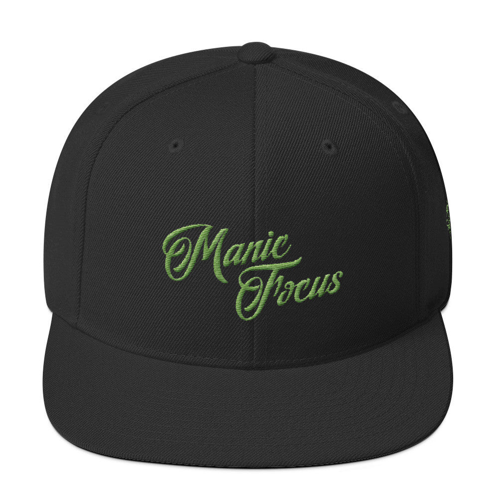 The Script Logo Snapback In Black/Green