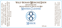 Master Cleanse - Mirror - Protection Mist