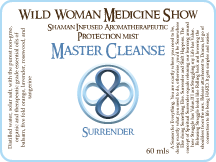 Master Cleanse - Surrender - Protection Mist
