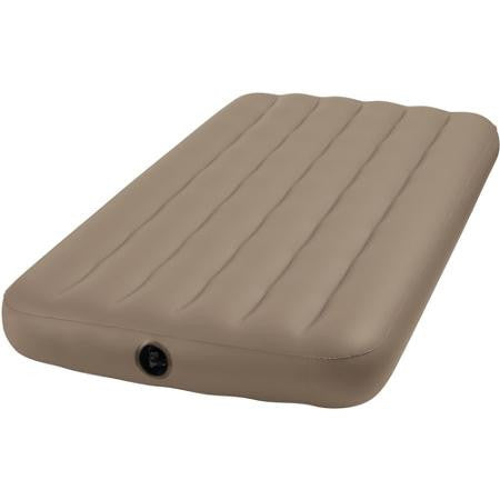 Vinyl Twin Sized Air Matress