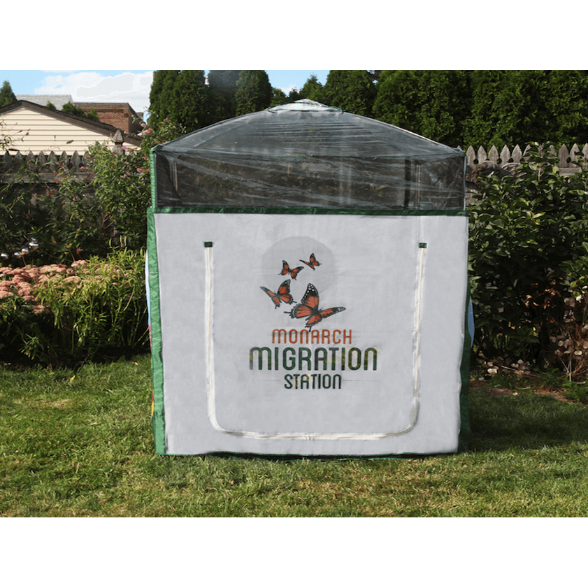 Frame It All Pro Butterfly Nursery 4'X 4' Raised Bed Monarch Migration shows nursery constructed on lawn