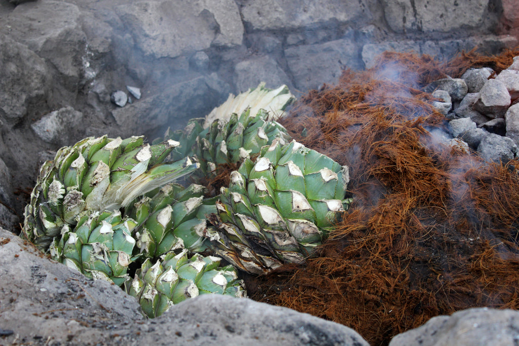 Making mezcal cooking the agave in the horno
