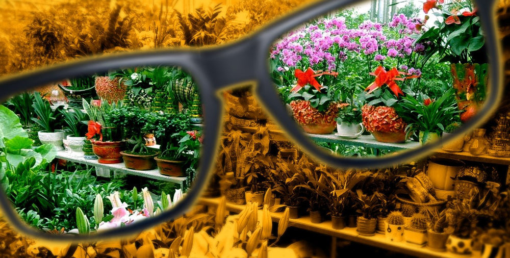 Wavelength Optical Horticultural Glasses HPS