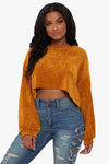 Big Dreams Crop Sweater