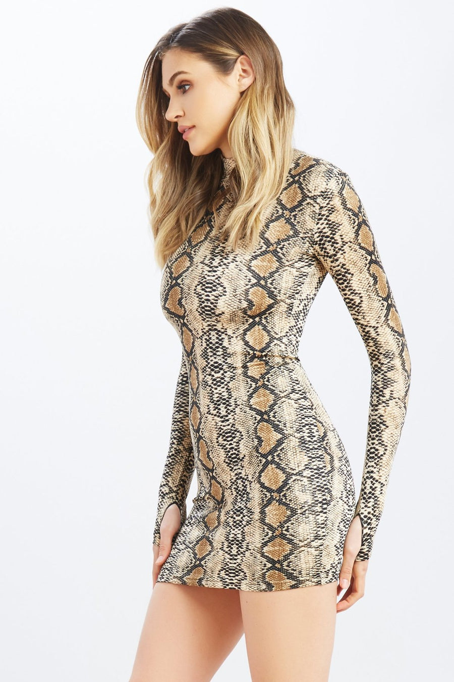 Never Rattled Snake Dress