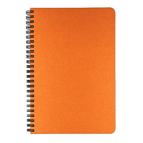 Blank Slate- Copper Notebook