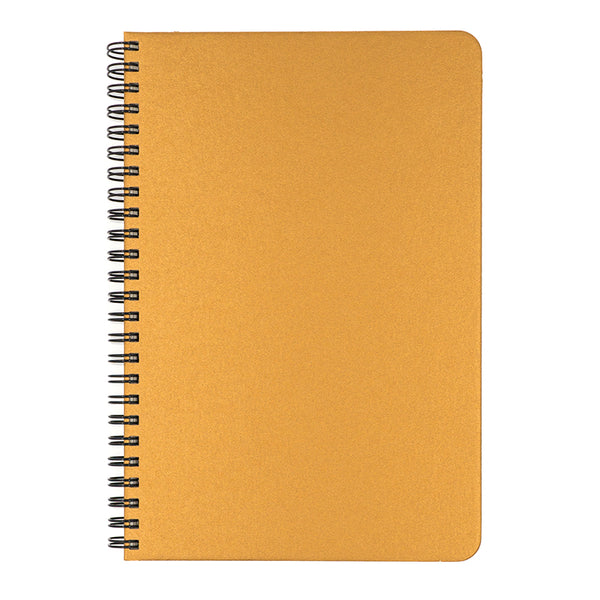 Blank Slate- Gold Notebook
