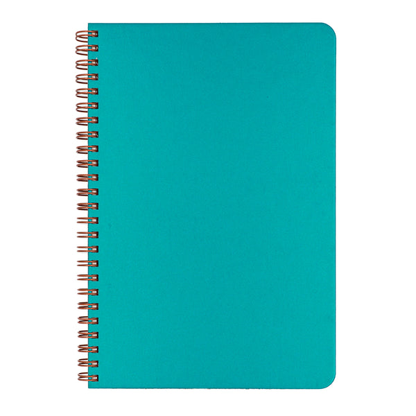 Blank Slate- Peacock Blue Notebook
