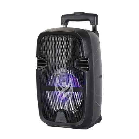 Blackmore BJS-216 Portable Speaker - 800-Watts
