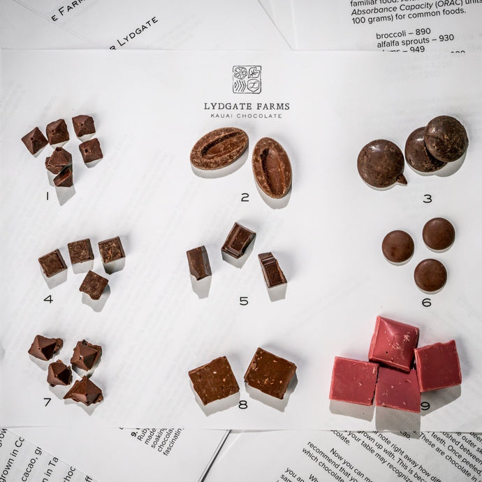 Single Origin Chocolate Tasting Kit