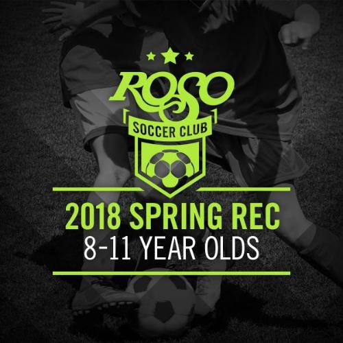 2018 Rec Soccer 8-11 Year Old Group