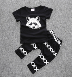 Raccoon 2 Piece Set - Three Bears Kids