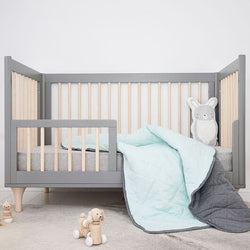 Mister Fly - Seafoam/Charcoal REVERSIBLE Cot Quilt