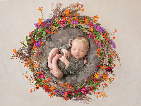"Newborn Photography Digital Backdrop - ""End of summer"""
