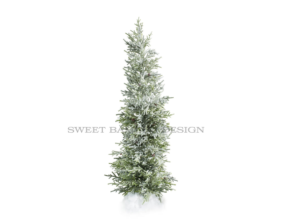 Christmas digital prop - Tall, Green Christmas Tree