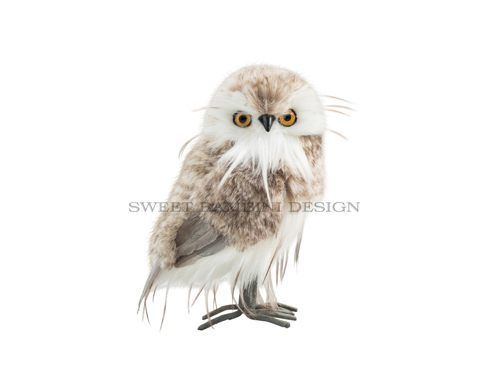 Digital prop - Little Owl Cut Out