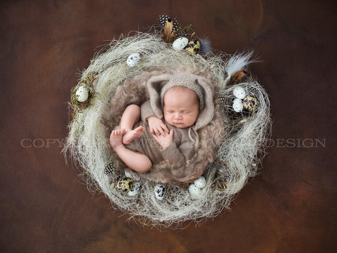 Newborn Easter Digital Backdrop for girls or boys - Natural nest with little eggs shot on a rich textured brown background