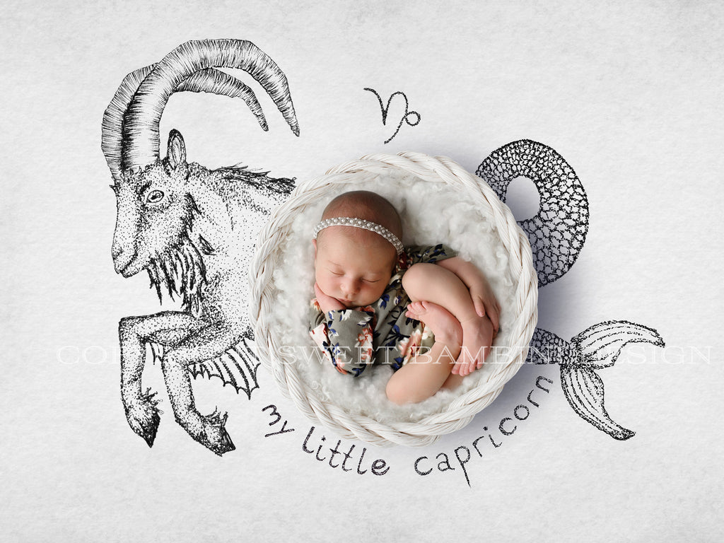 capricorn newborn digital backdrop