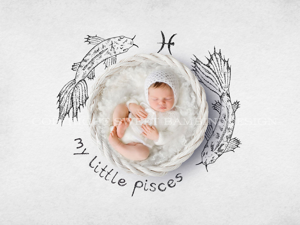 Horoscope newborn digital backdrop - PISCES - zodiac digital with a white basket- instant download