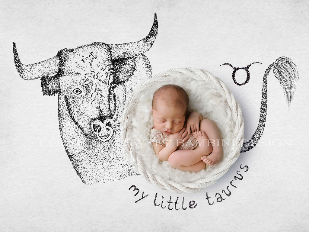 Horoscope newborn digital backdrop - TAURUS - zodiac digital with a white basket- instant download