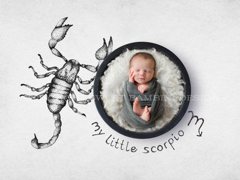 Horoscope newborn digital backdrop - SCORPIO- zodiac digital with a black bowl- instant download