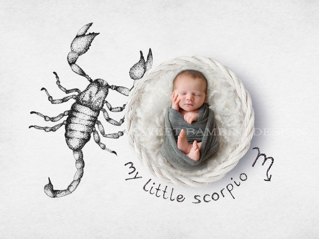 Horoscope newborn digital backdrop - SCORPIO - zodiac digital with a white basket- instant download