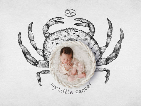Horoscope newborn digital backdrop - CANCER - zodiac digital with a white basket- instant download