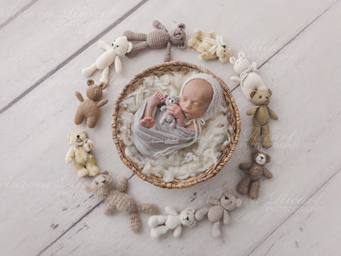 Newborn Digital Backdrop - Natural Nest with Teddy Bears