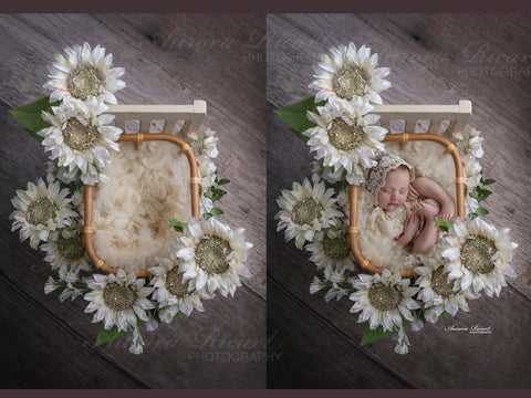 Newborn Digital Backdrop-Sparkly white sunflowers and pretty white flowers