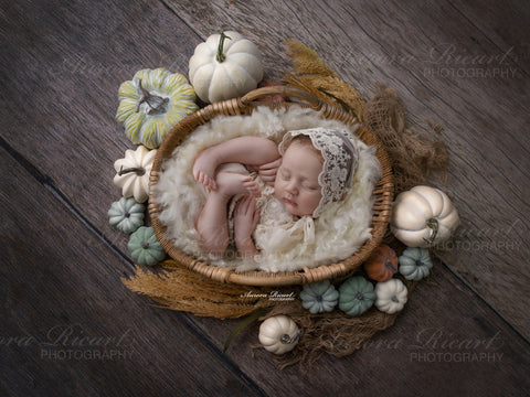Newborn Digital Backdrop - Autumn Harvest