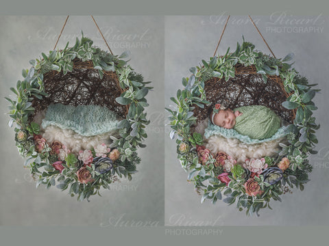 Newborn Digital Backdrop - Gorgeous Hanging floral wreath with succulents