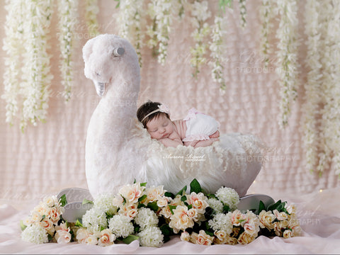 Newborn Digital Backdrop - White swan decorated with white flowers