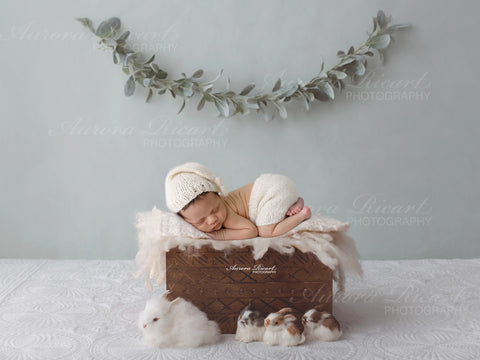 Newborn Digital Backdrop - Little wooden box surrounded by cute bunnies and green foliage