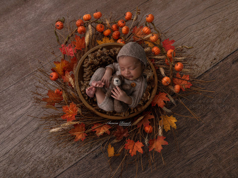 Newborn Digital Backdrop - Beautiful Autumn nest with mini pumpkins