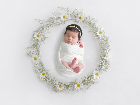 Newborn Digital Backdrop - Daisy and Wildflower Wreath
