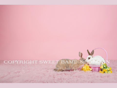 Sitter Digital Backdrop - Pink Easter Backdrop with Real Bunnies