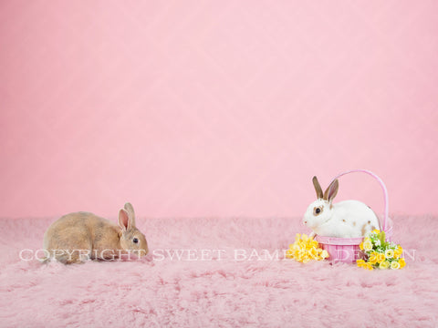 Sitter Digital Backdrop - Pink Easter Backdrop with real bunnies and flowers