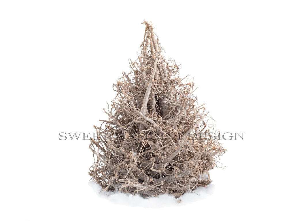 Tree digital prop - Root tree - perfect for Christmas scenes