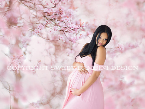 Maternity Digital Overlay - Pink Blossom Tree