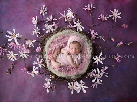 Magnolia Digital Backdrop for newborn girls  - Natural nest with pink magnolia blossom shot on a rich textured purple background