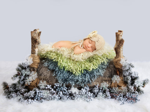 Newborn Photography Digital Backdrop Christmas Winter Wonderland Bed