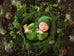 Newborn Digital Backdrop - Woodland Wall - Marley