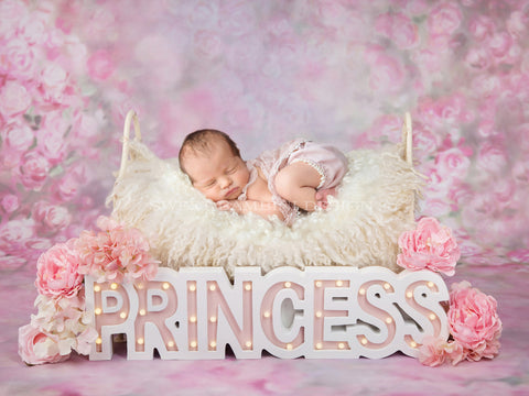 Newborn Photography Digital Backdrop Princess Bed