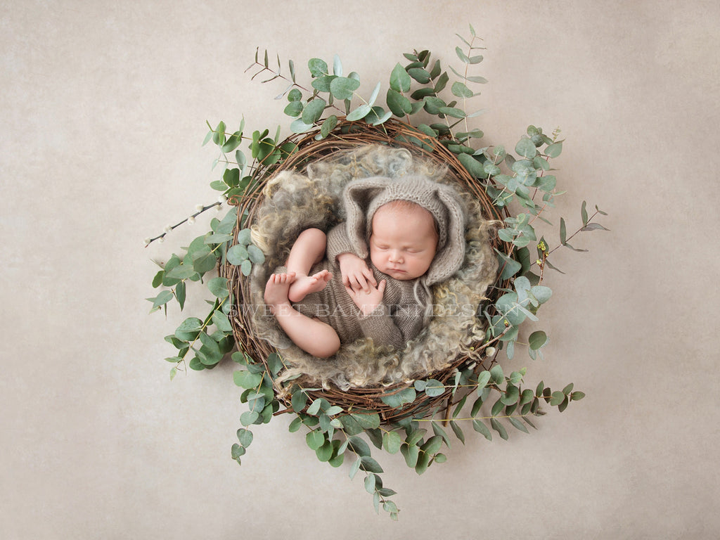 Newborn Digital Backdrop for boys - natural nest perfect for a little bunny or bear!