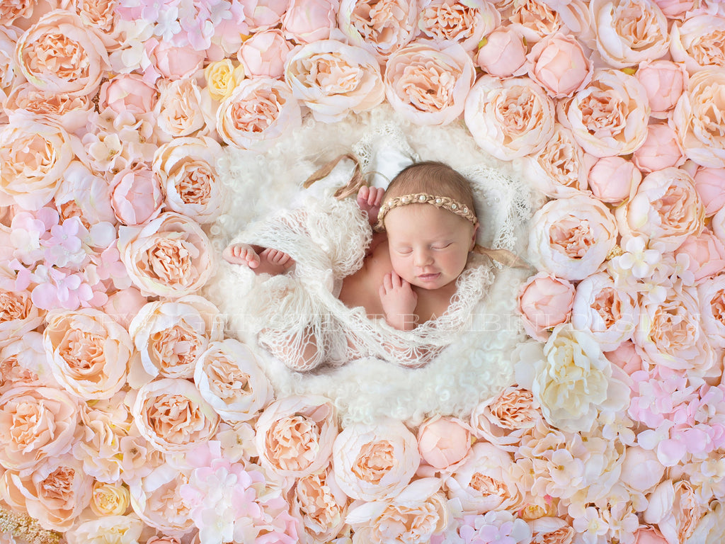 Newborn Digital Backdrop - Peach and Pink Peony Flower Wall