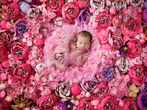 Newborn digital background, rich pink peonies, flower wall