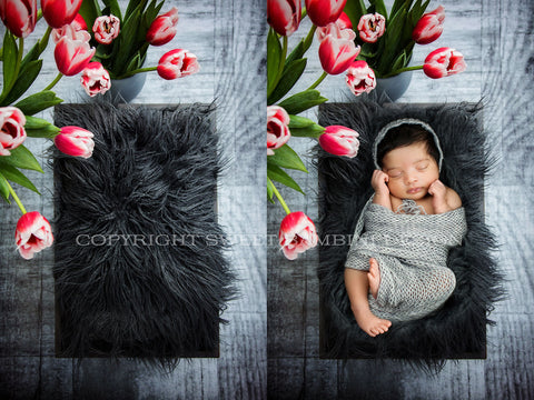 Newborn Digital Backdrop - Little grey bed shot from above with bright tulips