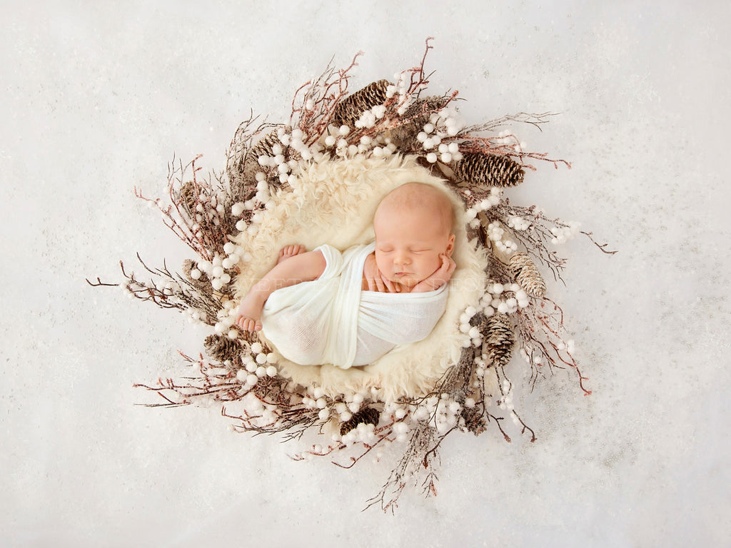 Digital Backdrop for Newborn Photography - Winter Nest