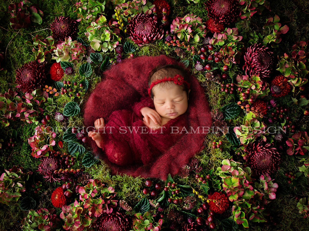 "Newborn digital backdrop - Shades of red flower wall - ""Ruby"""